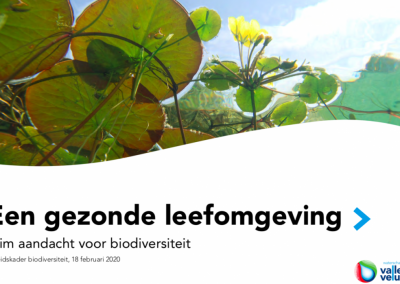 Ontwikkeling beleidskader biodiversiteit Waterschap Vallei en Veluwe (2019 – 2020)