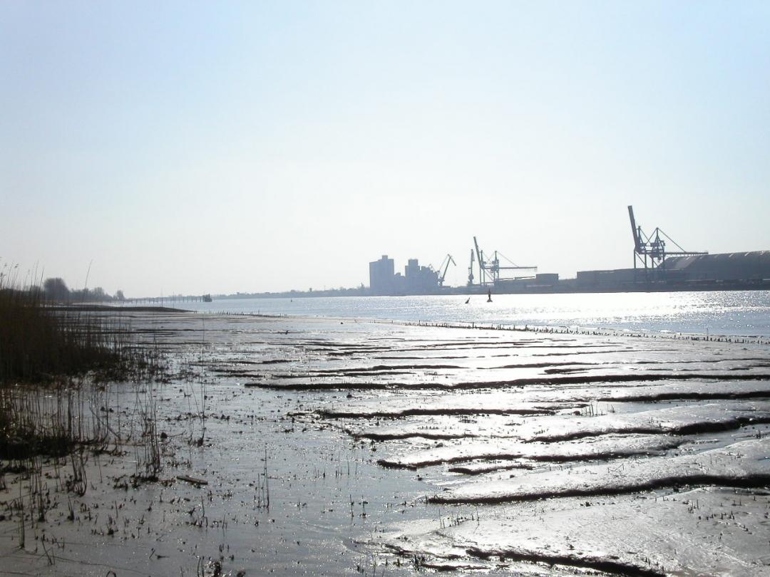 Gebiedsontwikkeling estuaria: Europees programma EMOVE – Slotconferentie – voorzitter (2015)